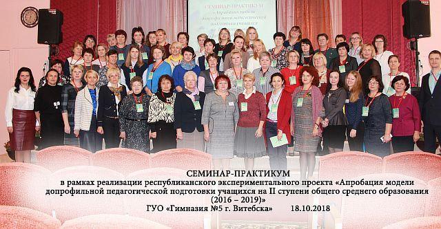 18 октября 2018 года в гимназии №5 г.Витебска продолжилась серия семинаров-практикумов в рамках реализации республиканского экспериментального проекта
