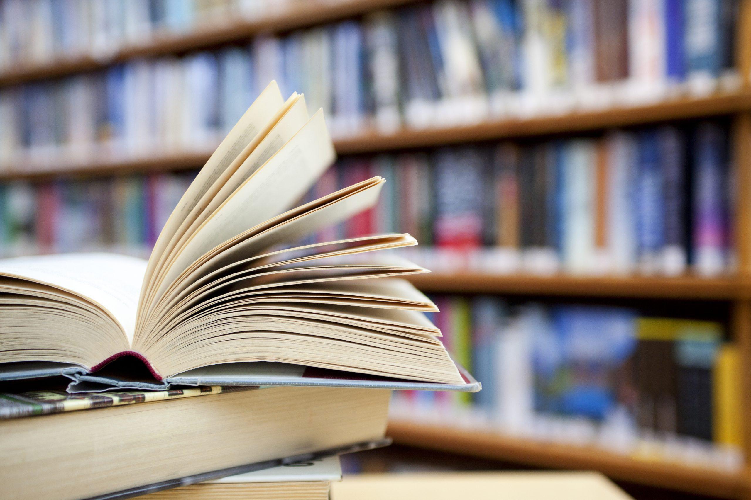 4 марта 2019 года присвоен гриф УМО по педагогическому образованию