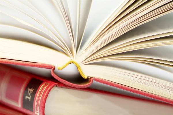 21 декабря 2020 года присвоен гриф УМО по педагогическому образованию